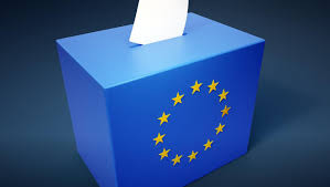 referendum-ballot-box[1]